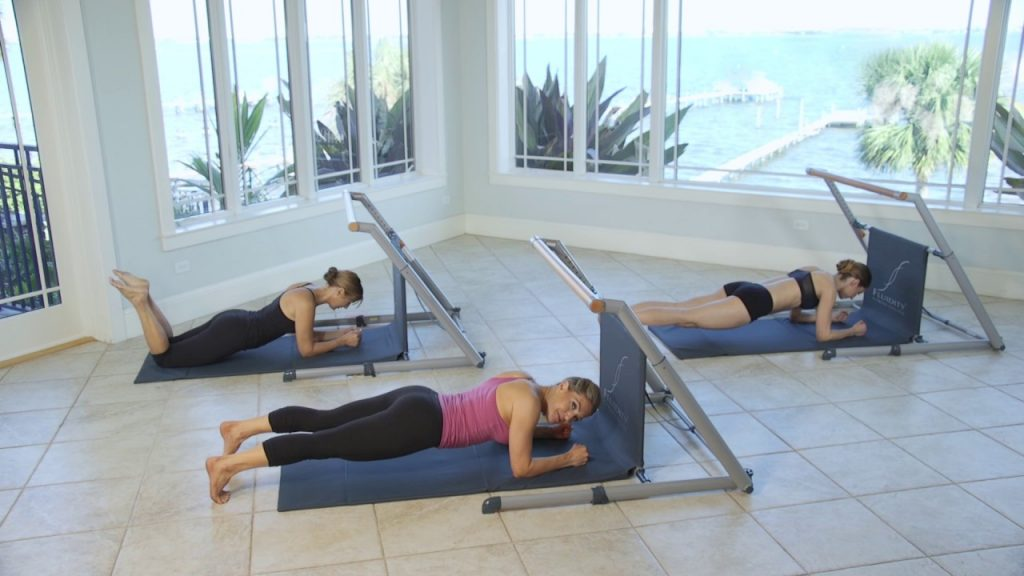 Fluidity Exercise Bar Reviews and Buying Guide