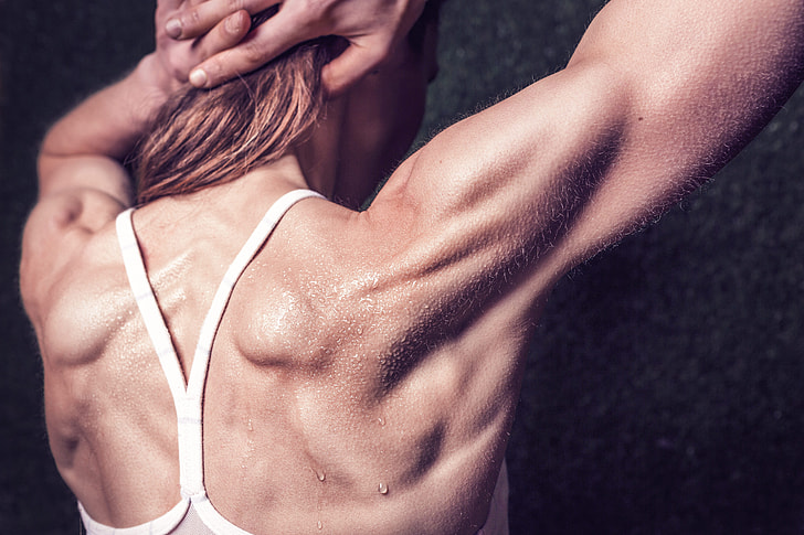 10 Rules to Help You Build Muscles